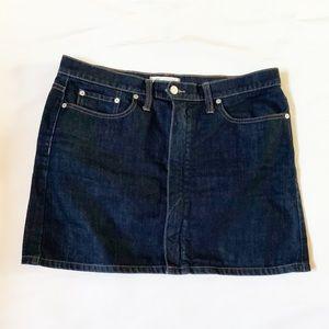 Madewell mini skirt 29